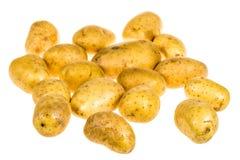 Grupo de patatas orgánicas frescas Imagen de archivo libre de regalías