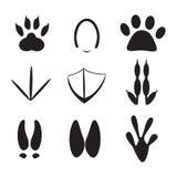 Grupo de pegada dos animais ilustração royalty free