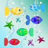 Grupo de peixes coloridos incomuns Imagem de Stock Royalty Free