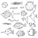 Grupo de peixes exóticos Ilustração do vetor ilustração royalty free