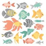 Grupo de peixes heterogêneos ilustração do vetor