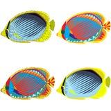 Grupo de peixes tropicais do mosaico colorido Isolado no fundo branco Imagens de Stock Royalty Free