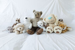 Grupo de peluches lindos en un sofá blanco Fotos de archivo