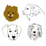 Grupo de perfis bonitos e de silhuetas do cão em um fundo branco Fotografia de Stock Royalty Free