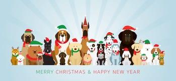Grupo de perros que llevan el traje de la Navidad fotografía de archivo