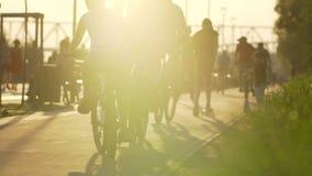 Grupo de personas en las bicicletas que montan en parque fondo, actividad deportiva del ocio del deporte activo de la forma de vi almacen de metraje de vídeo