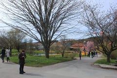 Grupo de personas en un parque, jardín botánico de Goteburgo, Suecia foto de archivo libre de regalías