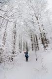 Grupo de personas que camina en un bosque con las estafas de la nieve Imagen de archivo libre de regalías