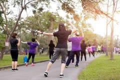Grupo de personas que hace el baile de los aeróbicos del ejercicio Imagenes de archivo