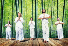 Grupo de personas que hace la meditación con la naturaleza Foto de archivo