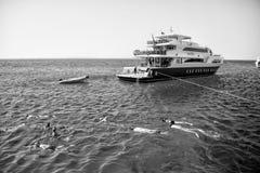 Grupo de personas que nada bajo el agua en el mar azul, Hurghada, Egipto Imágenes de archivo libres de regalías