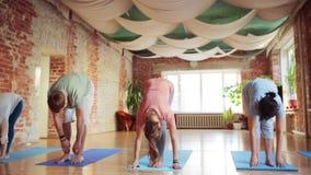 Grupo de pessoas que faz exercícios da ioga no gym video estoque