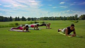 Grupo de pessoas que faz o exercício da prancha na grama verde no dia ensolarado filme
