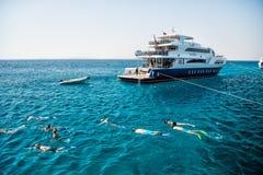 Grupo de pessoas que nada debaixo d'água no mar azul, Hurghada, Egito Foto de Stock Royalty Free