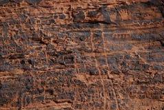 Grupo de petroglifos en la piedra arenisca roja Fotografía de archivo