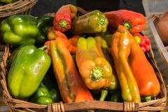 Grupo de pimentas coloridos na cesta de vime marrom foto de stock