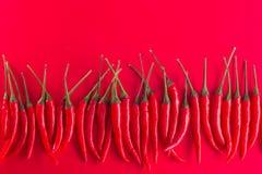 Grupo de pimentas de pimentão vermelho Fotografia de Stock Royalty Free