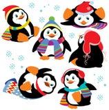 Grupo de pinguins dos desenhos animados Fotografia de Stock Royalty Free