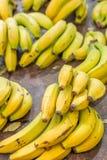 Grupo de plátanos como se ve en mercado español Imagen de archivo