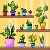 Grupo de plantas da casa na tabela ilustração royalty free