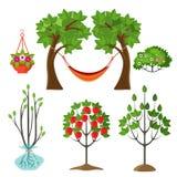 Grupo de plantas do verão no conceito de jardinagem Árvore de Apple Fotos de Stock Royalty Free