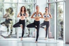 Grupo de posição praticando da lição da ioga dos povos desportivos novos no exercício de Vrksasana fotografia de stock royalty free