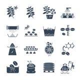 Grupo de processamento preto da produção do café dos ícones ilustração stock