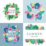 Grupo de projeto exótico e tropico do verão de cartão Imagem de Stock