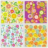 Grupo de papéis de parede da flor Ilustração Royalty Free