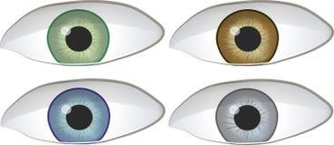 Grupo de quatro olhos Fotos de Stock