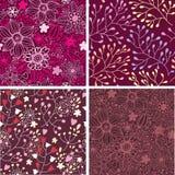 Grupo de quatro testes padrões florais coloridos. Imagem de Stock