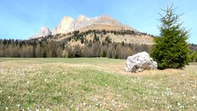Grupo de Rosengarten, Tirol sul, Itália video estoque