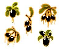 Grupo de símbolos das azeitonas pretas Fotos de Stock Royalty Free