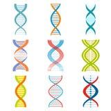 Grupo de símbolos do ADN e da molécula ilustração stock