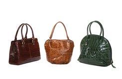 Grupo de sacos das mulheres do couro envernizado Imagens de Stock Royalty Free