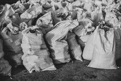Grupo de sacos tejidos plástico llenados, efecto monocromático fotografía de archivo