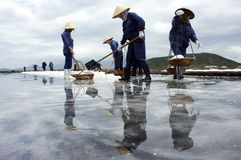 Grupo de sal de la cosecha del saltworker en la salina. VAGOS RIA,  Foto de archivo