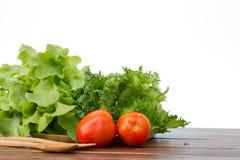 Grupo de salada que são tomate, iceberg franzido e carvalho verde em w Foto de Stock