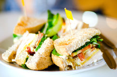 Grupo de sanduíches de clube Fotos de Stock Royalty Free