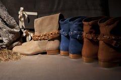 Grupo de sapatas da fêmea dos produtos outono Fotografia de Stock Royalty Free