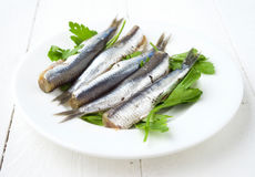 Grupo de sardinhas cruas pedidas na placa com salsa Imagem de Stock