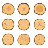Grupo de seções transversais redondos de uma árvore com um teste padrão diferente do anel isolado em um fundo branco Ilustração d ilustração do vetor