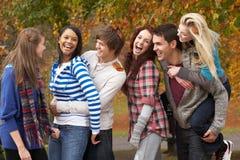 Grupo de seis amigos adolescentes que se divierten Imágenes de archivo libres de regalías
