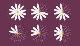 Grupo de seis margaridas como diagramas de torta Imagens de Stock Royalty Free
