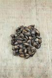 Grupo de semillas de la sandía Fotos de archivo