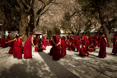 Grupo de Sera Monastery de monjes de discusión Lhasa Tibet Imágenes de archivo libres de regalías