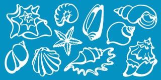 Grupo de shell do mar em um fundo azul Mundo submarino Linha do vetor Fotos de Stock