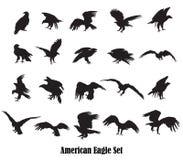Grupo de silhuetas americanas da águia do vetor Fotografia de Stock