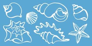 Grupo de silhuetas de shell do mar Ilustração do vetor Imagem de Stock