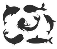 Grupo de silhuetas subaquáticas com sereia, baleias da vida do vetor, ilustração do vetor